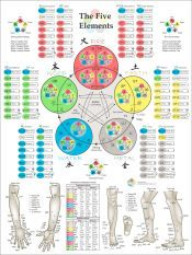 the worlds best five elements wall chart the five elements of chinese medicine
