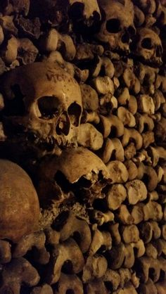 Catacombs of Paris Catacombs, Continents, Stuffed Mushrooms, Europe, Paris, Vegetables, Food, Stuff Mushrooms, Montmartre Paris