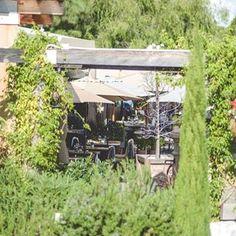 Roger's Gardens (@rogersgardens) • Instagram photos and videos Rogers Gardens, Garden Styles, Garden Inspiration, Garden Plants, Gardening, Display, Holidays, Canning, Photo And Video