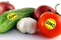 Here is a useful list of 230+ Canadian companies supplying heirloom / non-GMO / organic seeds
