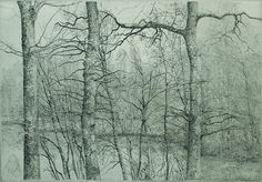 Charles Donker - Fort met Drie Eiken (Rhijnauwen) (Fort with three Oak Trees) - etching, 2002
