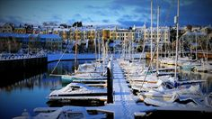 Bangor Marina with snow covered boats