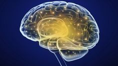 Demenz: Demenz: Vergesslichkeit ist nicht immer ein Anzeichen.  (Quelle: Thinkstock by Getty-Images)