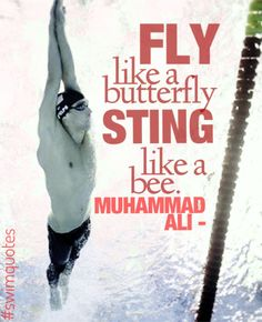 Fly like a butterfly, Sting like a bee. -Muhammad Ali.