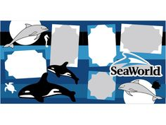 You have to capture those sea world moments!