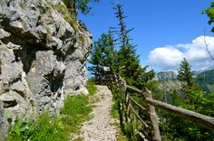 Hike trail to Rochers de Naye