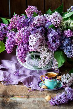purple and tea! Lilac Flowers, Beautiful Flowers, Feel Good Pictures, Sweet Coffee, Flower Tea, Coffee Photography, Coffee Cafe, Coffee Drinks, Latte Art