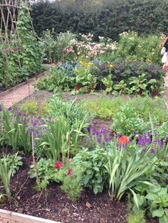 The layers of the vegetable garden are stunning!