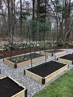 47 amazing ideas for growing a vegetable garden in your backyard 11 Backyard Vegetable Gardens, Veg Garden, Vegetable Garden Design, Garden Landscape Design, Garden Trellis, Garden Boxes, Outdoor Gardens, Garden Ideas, Garden Edging