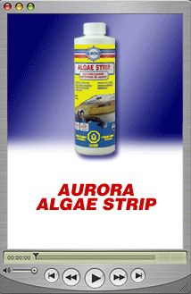 ALGAE STRIP ™ High quality and most efficient fiberglass boat bottom cleaner. Cleans and removes Algae, Barnacle & Zebra Mussels from fiberglass boats. Algae Strip is safe for fiberglass boats, and easy to use.