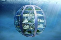 The SmartThings Future Living Report predicts how homes will look in 100 years. Perhaps most striking is where they& be: underwater and underground. Architecture Design, Amazing Architecture, Floating Architecture, Futuristic City, Futuristic Architecture, Sustainable Architecture, Future City, Casa Bunker, 3d Printed House