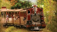Day Trip: Puffing Billy Steam Railway, Australia's oldest steam railway, travels through the forests and fern gullies of the Dandenong Ranges from Belgrave. Domaine Chandon, Visit Melbourne, Steam Railway, Yarra Valley, Train Journey, Old World Charm, Train Tracks, South Pacific, Day Trip