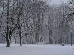 Zima w Warszawie 2012, fot. M.J.