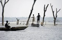 Lake Volta, Ghana | This lake was formed by the Akosomba hydroelectric dam and was completed in 1965. It holds the world title for largest surface area of any reservoir and also maintains a hidden cache of dead trees – tropical hardwoods preserved by the lack of oxygen in the water – in its midst.