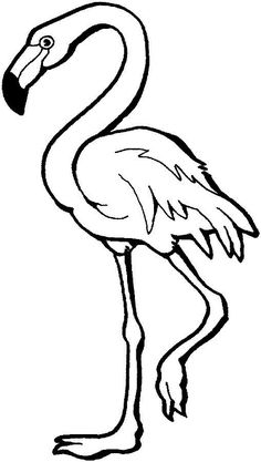 This coloring page for kids features a flamingo standing on one leg. The flamingo has a long neck as well as long, skinny legs.