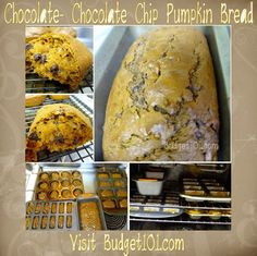 Here is a recipe for deliciously moist chocolate, chocolate chip pumpkin bread. What started out as a holiday gift giving tradition has turned into a highly requested freezer staple in our house. http://www.budget101.com/recipes/chocolate-chocolate-pumpkin-bread-4561.html