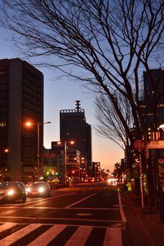 仙台でも早朝ウォーキングしてきたよ 天気も良く気温が上がる予報 でも、早朝はやはり寒い´д` ;