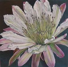 Colored Pencil Artists - Bing Images
