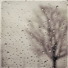"""Title: Rainy Day Size: 5""""x5"""" Original Print numbered and signed by photographer on back of photo.   $12.50"""