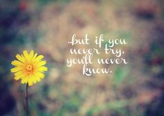 Best Quotes : But if you never try ... you will never know.
