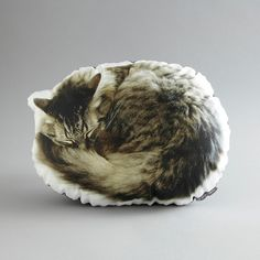 Cat pillows!  Sleeping Cat Canvas Printed Pillow