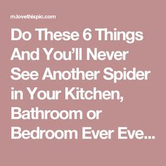 Do These 6 Things And You'll Never See Another Spider in Your Kitchen, Bathroom or Bedroom Ever Ever Again!