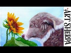 BORDER COLLIE PUPPY WITH SUNFLOWER Beginners Acrylic Tutorial Step by Step BAQ2021