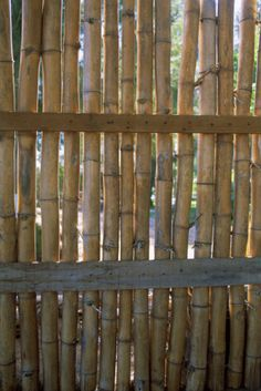 Do-it-yourself Bamboo Fence