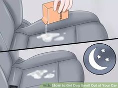 Image titled Get Dog Smell Out of Your Car Step 7