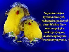 Najserdeczniejsze życzenia Common Phrases, Cool Animations, Humor, Family Quotes, Happy Easter, Flower Power, Cool Stuff, Funny, Cards