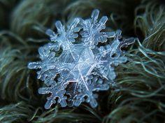 Makro zdjęcia śniegu sprzętem domowej roboty by Alexey Kljatov