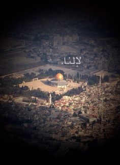 Ours #palestine