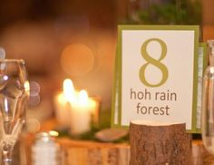 Because we love hiking and wanted a woodsy wedding, we named every table at our reception after a place in the Olympic Mountains. Each table had a topography map, a photo and a description of the place that we put together and placed in slits cut into tree branches.