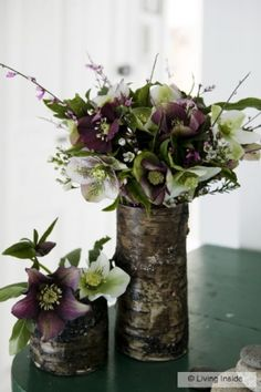 Hellebores + wood :: inspiration for the whole wedding Beautiful Gardens, Beautiful Flowers, Deep Purple Wedding, Lenten Rose, Flower Arrangements Simple, Winter Wedding Flowers, Christmas Rose, Winter Garden, Garden Inspiration