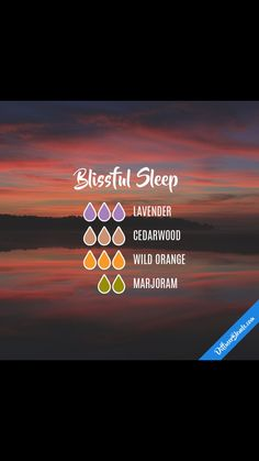 Blissful Sleep Blend