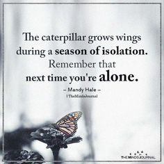 Life Quotes Discover The Caterpillar Grows Wings During A Season Of Isolation. The caterpillar grows wings during a season of isolation. Remember that next time youre alone. Now Quotes, Life Quotes Love, True Quotes, Great Quotes, Quotes To Live By, Motivational Quotes, Quotes Of Hope, Speak The Truth Quotes, The Best Revenge Quotes