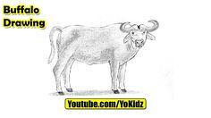 How to draw a BUFFALO for kids  Buffalo Drawing from YoKidz  #YoKidz #Drawing #PencilDrawing #Generaldrawing #Like4like #Likeforlike #Share4share #Shareforshare #Draw #Blackandwhite #Buffalo #DrawBuffalo