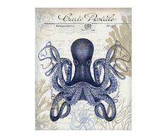 https://www.westwing.fr/affiche-octopus-x-bleu-29-36-1547508.html?c=c-cabinet-de-curiosites