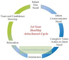 What healthy attachment is supposed to look like