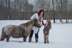 winter photography, winter family session, miniature horses, equestrian, winter maternity, snow magic