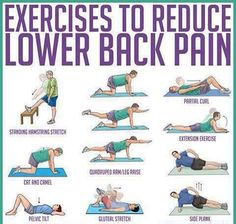 Exercise For Lower Back Pain . To Reduce Lower Back Pain Exercises To Reduce Lower Back Pain Lower Back Pain Exercises, Lower Back Pain Relief, Stretching Exercises, Scoliosis Exercises, Fitness Exercises, Core Exercises, Workout Exercises, Lumbar Exercises, Lower Back Strain