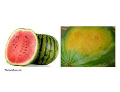 How to pick a good watermelon.