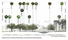 Image result for Landscape architecture section