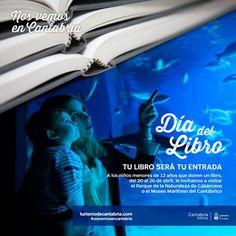 Celebramos el día del libro en el museo - CANTUR – Sociedad Regional Cántabra de Promoción Turística - Cantabria