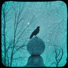 PICTURES OF GOTH SNOW GLOBES | Goth Snow Globe Photograph by Gothicolors With Crows - Goth Snow Globe ...