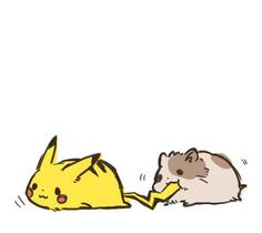 pikachu my friend sent me this @cream2268  SO kawaii!!! Hamster and pikachu !  #可愛い