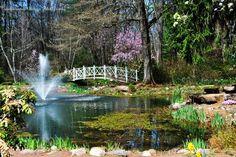 Sayens Gardens, Trenton, NJ.