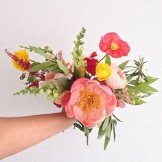 Paper Flowers, Wild Flowers, Hello July, Winter Springs, Potpourri, Watercolor Flowers, Painting & Drawing, Planting Flowers, Beautiful Flowers