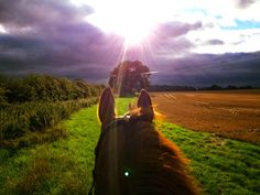 From Laura, Hampshire | The Jacksons BIG Equestrian Picture Competition #horse #riding #equestrian #sun #clouds #photography