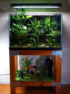 unusual and creative diy aquarium diy aquarium aquariums and creative rh pinterest com